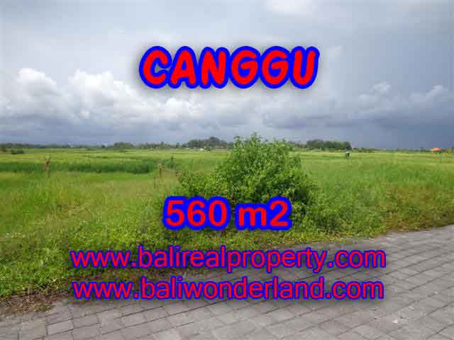 Land in Bali for sale, Stunning view in Canggu Bali – TJCG138