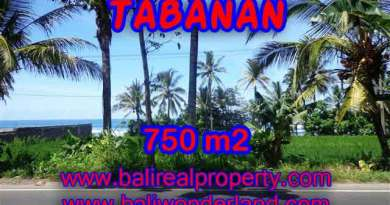 Magnificent Property for sale in Bali, land for sale in Tabanan Bali – TJTB105