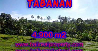 Land for sale in Tabanan Bali, Magnificent view in Tabanan Penebel – TJTB111