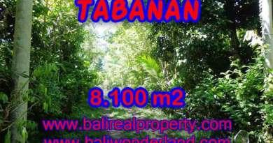Land in Tabanan Bali for sale, nice view in Tabanan Penebel Bali – TJTB113