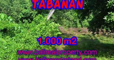 Land in Tabanan for sale, Amazing view in Tabanan kediri Bali – TJTB114