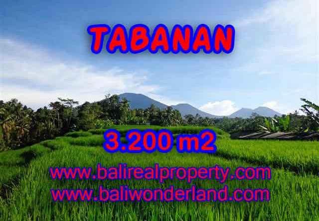 Land in Tabanan Bali for sale, Outstanding view in Tabanan Penebel – TJTB118