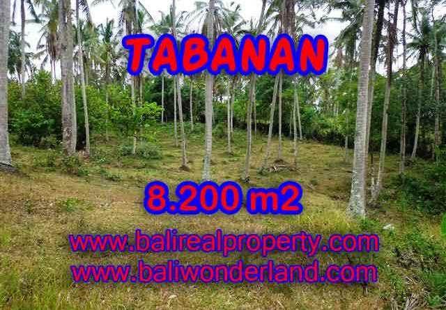 Land for sale in Bali, wonderful view in Tabanan Bali – TJTB142