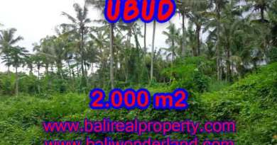 Fantastic Land for sale in Bali, garden view by the small river in Ubud Center– TJUB397