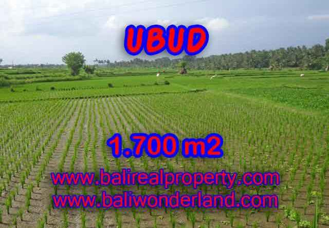 Land for sale in Bali, Fantastic view in Ubud Center – TJUB398