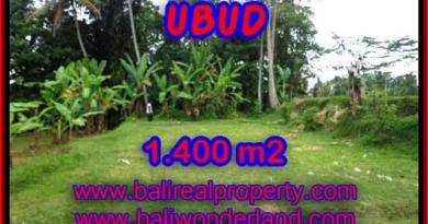 Fantastic Property for sale in Bali, land sale in Ubud Bali – TJUB419