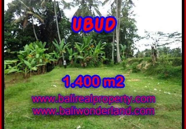 Fantastic Property for sale in Bali, land sale in Ubud Bali – TJUB419