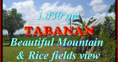 Beautiful Land for sale in Bali, Mountain & Rice fields view in Tabanan Bali – TJTB145