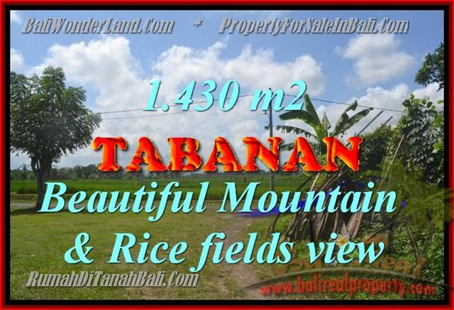 Beautiful Land for sale in Bali, Mountain & Rice fields view in Tabanan Bali – TJTB145