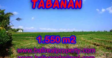 Land in Bali for sale, fantastic view in Tabanan Bali – TJTB134