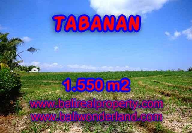 Land in Bali for sale, fantastic view in Tabanan Bali – TJTB134