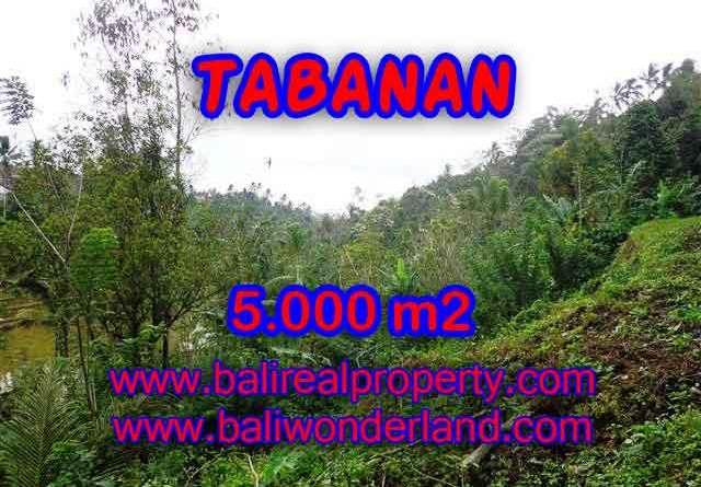 Land in Bali for sale, Outstanding view in Tabanan selemadeg Bali – TJTB139