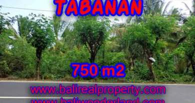 http://bali-land.com/land-for-sale-in-bali-astonishing-view-in-tabanan-selemadeg-bali-tjtb138/