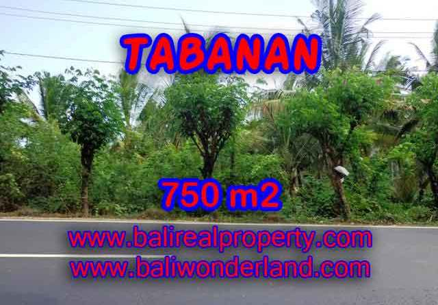 http://bali-land.com/land-for-sale-in-bali-astonishing-view-in-tabanan-selemadeg-bali-tjtb138/