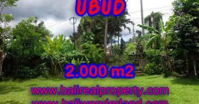 Magnificent Property for sale in Bali, land for sale in Ubud Bali – TJUB367