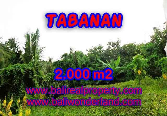Spectacular Property in Bali, land for sale in Tabanan Selemadeg – TJTB099
