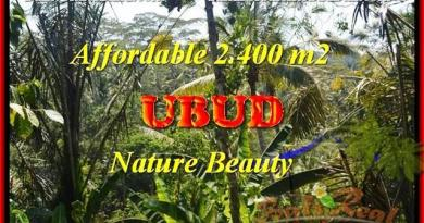 Exotic LAND IN UBUD BALI FOR SALE TJUB454