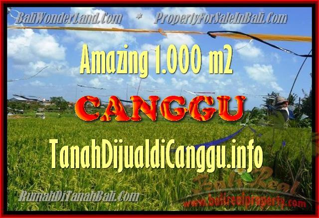 Beautiful 1.000 m2 LAND FOR SALE IN CANGGU TJCG154