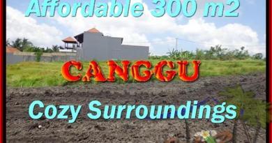 FOR SALE Exotic 300 m2 LAND IN Canggu Pererenan BALI TJCG157