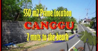 Canggu Batu Bolong BALI 550 m2 LAND FOR SALE TJCG159