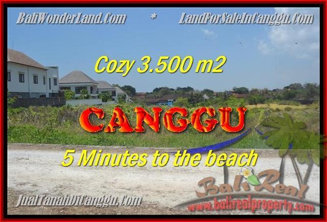 FOR SALE Exotic PROPERTY LAND IN Canggu Kayutulang TJCG165