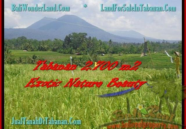 Magnificent 2.700 m2 LAND FOR SALE IN TABANAN BALI TJTB175