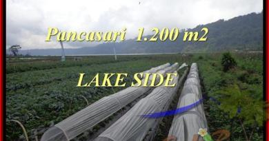 Beautiful PROPERTY LAND IN TABANAN FOR SALE TJTB178