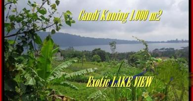 TABANAN 1.000 m2 LAND FOR SALE TJTB179