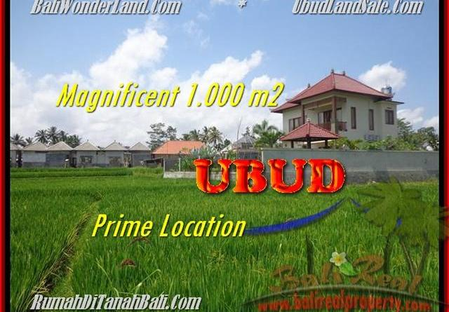 Magnificent PROPERTY UBUD BALI 1.000 m2 LAND FOR SALE TJUB445