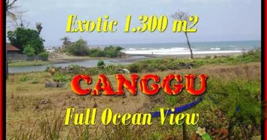 Affordable PROPERTY LAND SALE IN Canggu Pererenan TJCG162