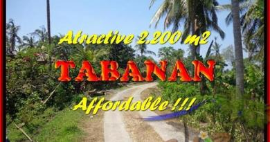 Exotic PROPERTY LAND FOR SALE IN TABANAN TJTB169