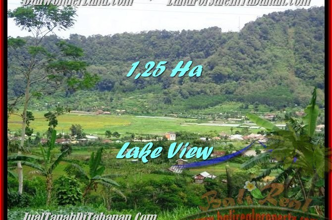 Affordable PROPERTY 12,500 m2 LAND SALE IN TABANAN BALI TJTB188