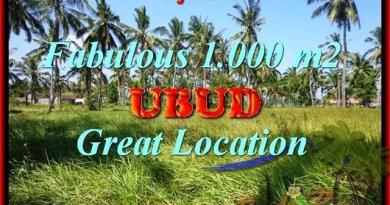 Beautiful 1,000 m2 LAND FOR SALE IN UBUD BALI TJUB434