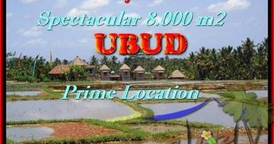 LAND SALE IN Sentral Ubud TJUB441