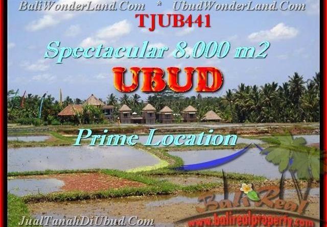 LAND SALE IN Sentral Ubud TJUB441