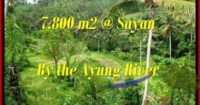 Exotic 7,800 m2 LAND SALE IN UBUD TJUB472