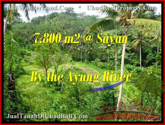 Magnificent 7,800 m2 LAND SALE IN UBUD TJUB472