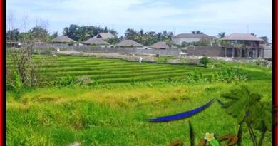 FOR SALE Affordable PROPERTY LAND IN Canggu Cemagi BALI TJCG137