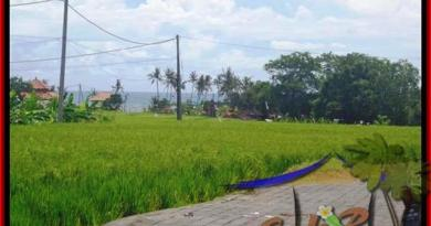 Exotic LAND FOR SALE IN Canggu Cemagi TJCG138