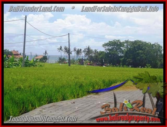 Beautiful PROPERTY 560 m2 LAND SALE IN CANGGU TJCG138