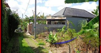 FOR SALE Exotic 312 m2 LAND IN Canggu Pererenan BALI TJCG145