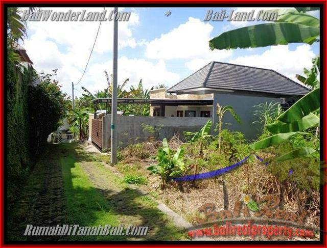 Beautiful PROPERTY LAND IN Canggu Pererenan BALI FOR SALE TJCG145