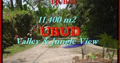 FOR SALE Affordable PROPERTY LAND IN Ubud Payangan BALI TJUB431