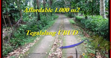 Affordable UBUD 1,000 m2 LAND FOR SALE TJUB467