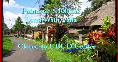 Affordable PROPERTY 5,100 m2 LAND IN UBUD BALI FOR SALE TJUB468