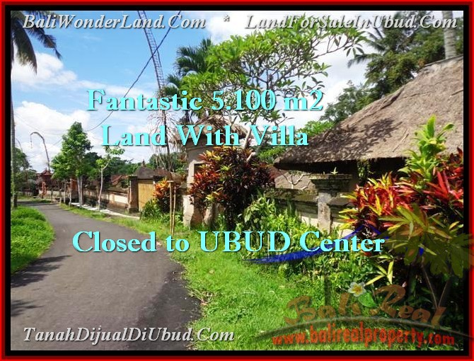 Magnificent PROPERTY UBUD BALI 5,100 m2 LAND FOR SALE TJUB468