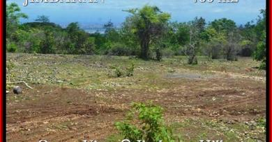 Affordable 400 m2 LAND FOR SALE IN Jimbaran Ungasan BALI TJJI088