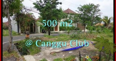Magnificent PROPERTY LAND IN Canggu Brawa BALI FOR SALE TJCG176