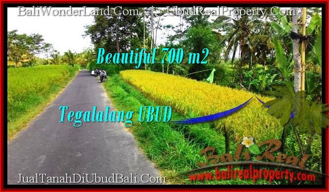 Affordable Ubud Tegalalang BALI LAND FOR SALE TJUB497