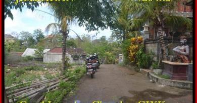 FOR SALE Magnificent PROPERTY LAND IN Jimbaran Ungasan TJJI083